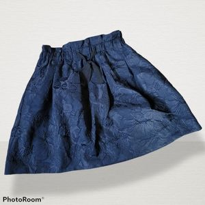 CUTEST💜 H&M navy skirt, size 10